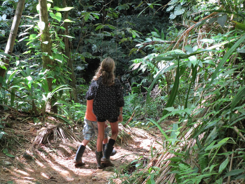 Syskonkärlek i regnskogen