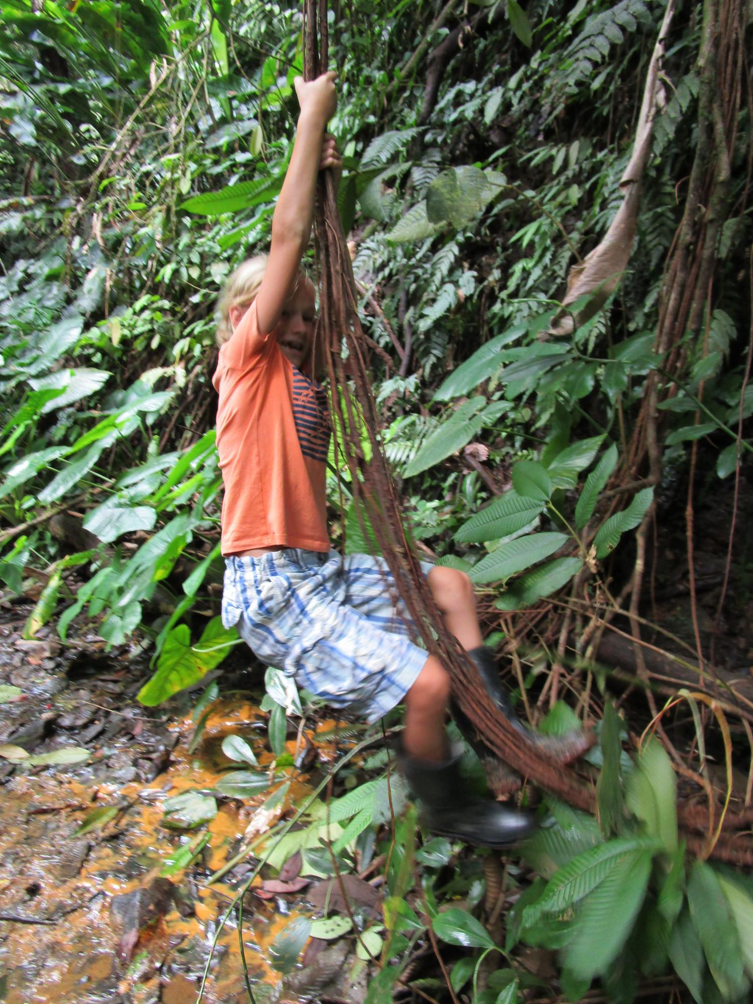 Tarzan Troels