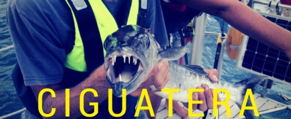 Giftig fisk