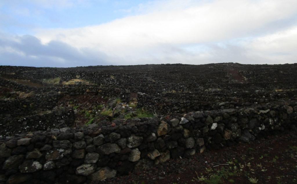 Murar av lavasten