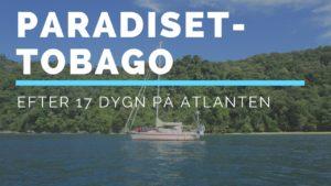 Paradiset- Tobago